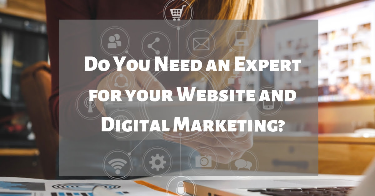 Do You Need an Expert for your Website and Digital Marketing?