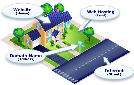 What is domain and web hosting? 1
